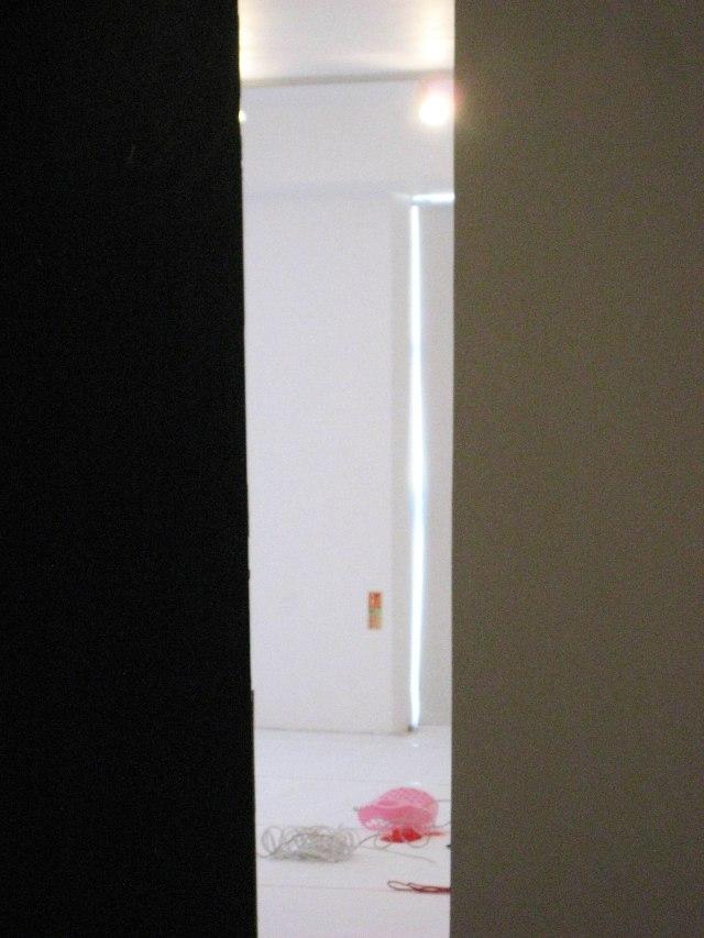Gestalt Installation   (4)