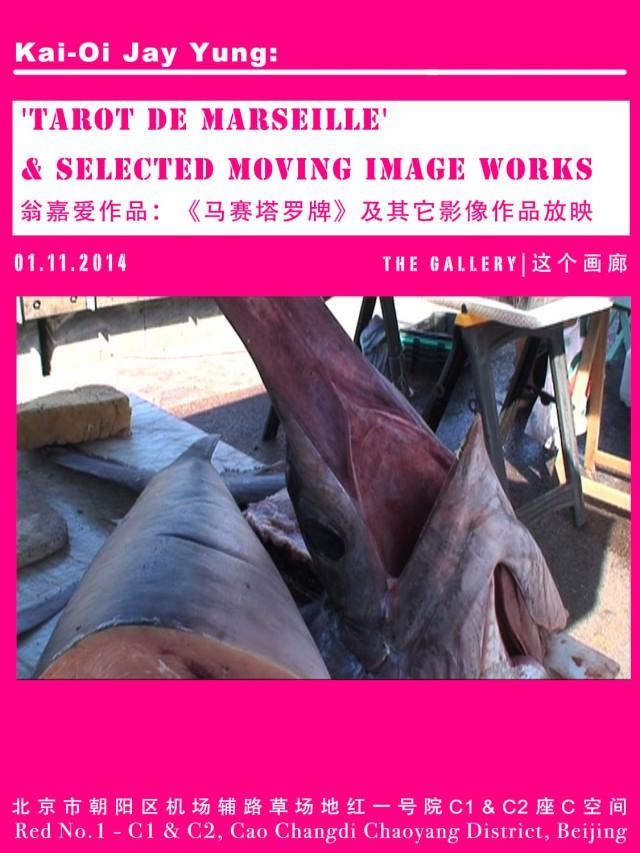 Moving Images TDM1